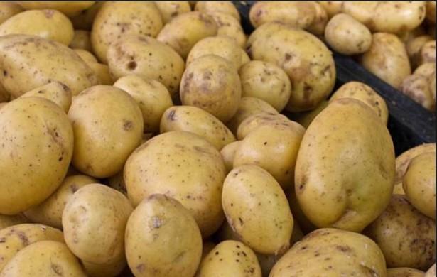 jual keripik kentang