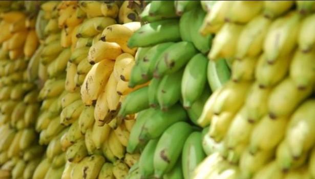 jual keripik pisang murah
